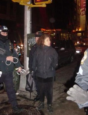 Barbara Ross arrested duing a 2005 Critical Mass ride in New York City