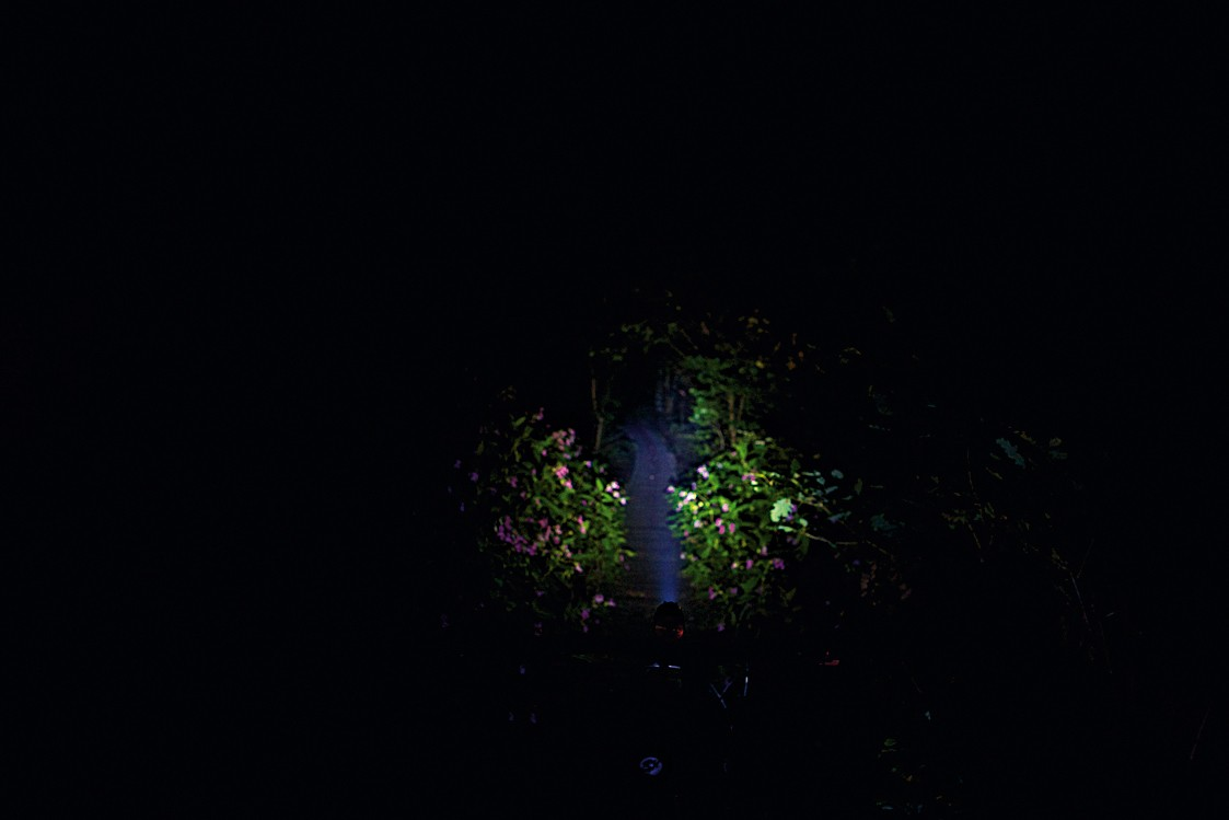 Hope Vision 1 LED beam