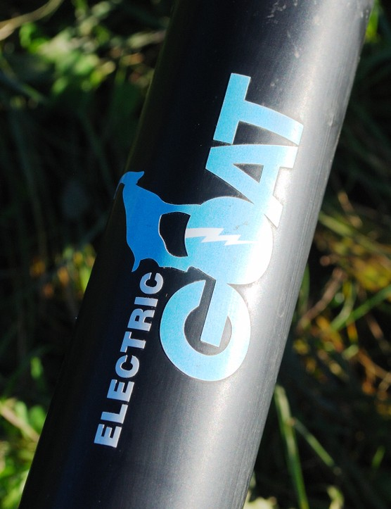 Electric Goat logo