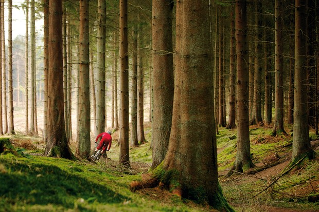 Cyclists urged to attend rally in Forest of Dean