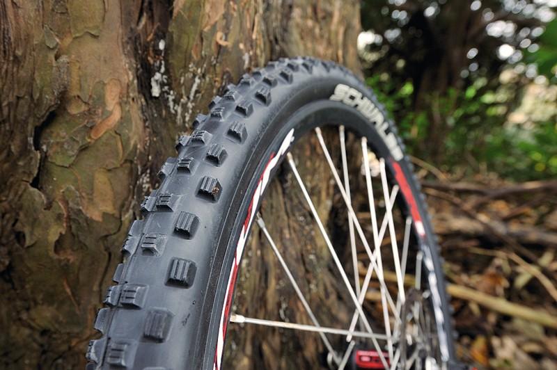 Schwalbe Dirty Dan tyre