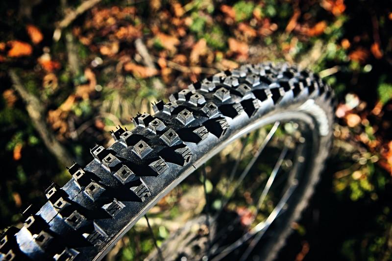 Panaracer CG SC 2.25in Tyre