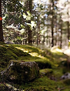 Being a responsible rider and looking after trails helps mountain biking go 'green'