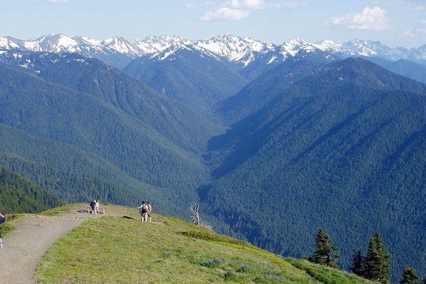 The view from Hurricane Ridge