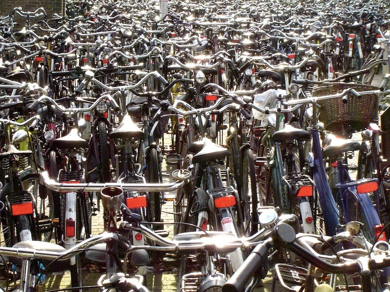 Dutch police are placing 'bait bikes' to catch thieves