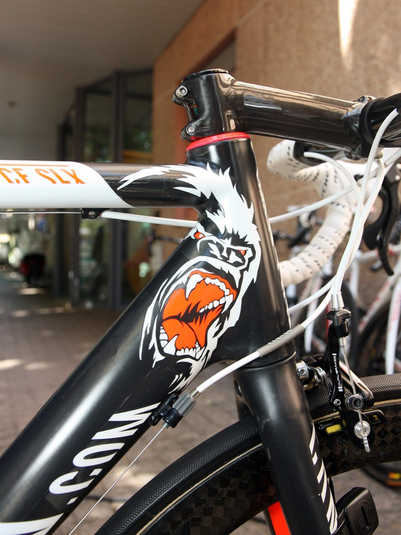 Gracing the front end of Omega Pharma-Lotto sprinter Andre Greipel's bike is a menacing gorilla