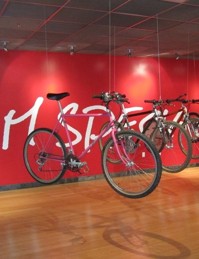 A line-up of Specialized's most recognizable bikes
