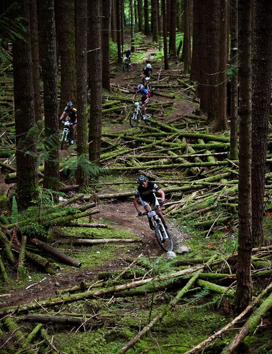 Weaving through the woods
