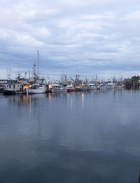 A quite night in Campbell River, the self-proclaimed salmon capitol of the world