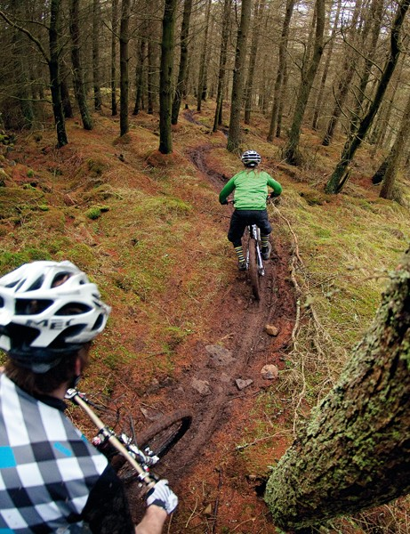 The trail snakes lightly through the trees, ensuring a gripping ride