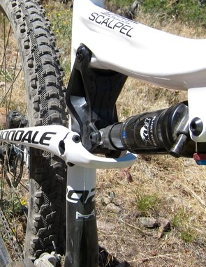The rear stays are shaped to flex and allow the elimination of the rear axle pivot