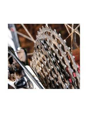 10-speed cassettes will fit on eight and nine-speed freehub bodies