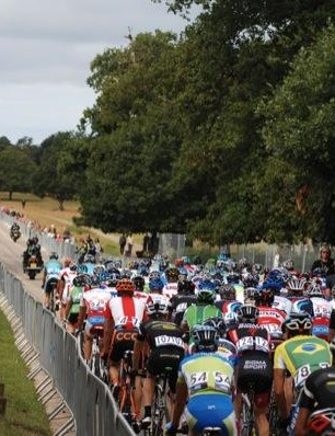 The bunch in Richmond Park