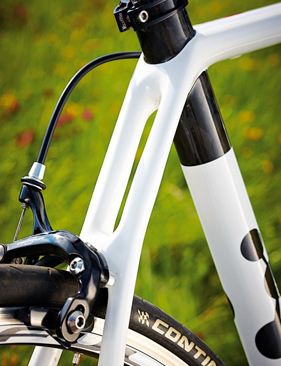 Below this point the bike is built for rigidity and stiffness