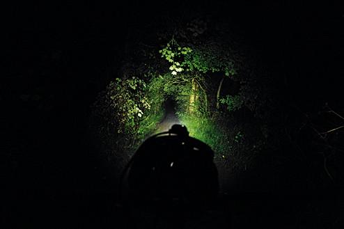 Lupine Piko front light beam