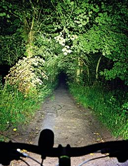 Full Bream Night Nemesis front light beam