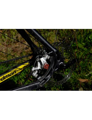 Rear disc brake mount