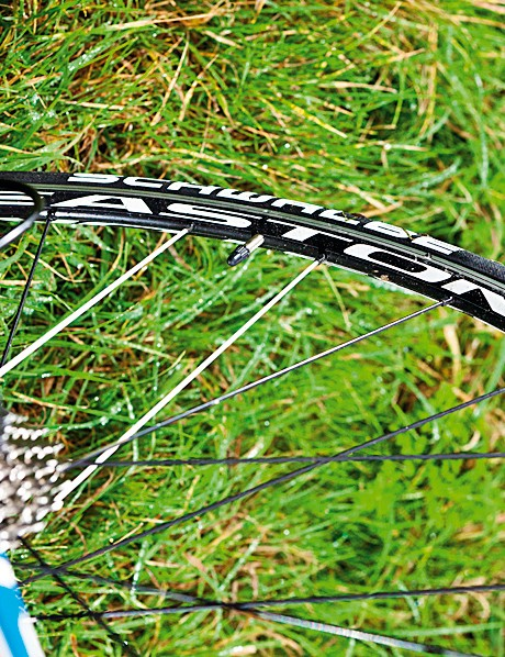 The Easton wheelset and Schwalbe tyres are budget busters