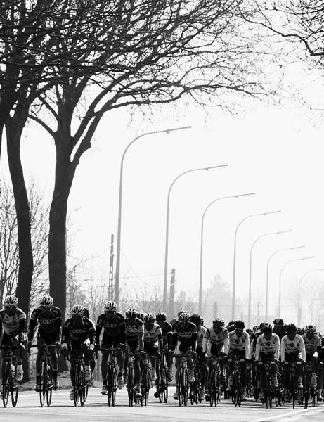 The peloton in Gent-Wevelgem