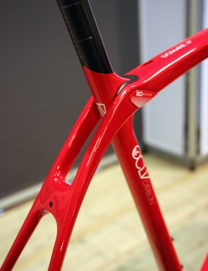 Trek have cleverly managed to incorporate the IsoSpeed pivot assembly into the Domane frame without radically impacting the aesthetics