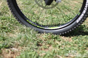 Trek's Cousin Earl Elite rims are 32mm wide (outside-to-outside)