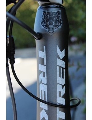 The head tube of Voigt's Madone