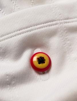 The eye of the Lammergeier