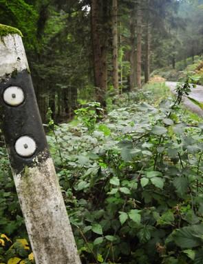 Odenwald forest, Neckar Valley, Germany