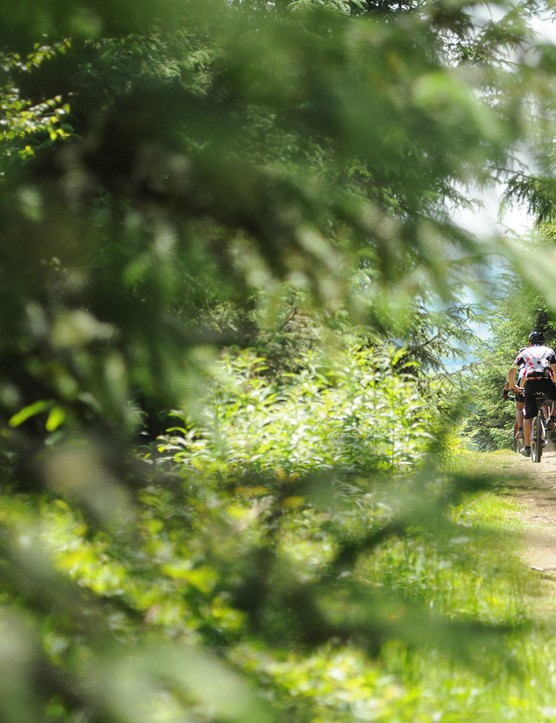 There'll be untimed long-distance rides and special off-road time trials