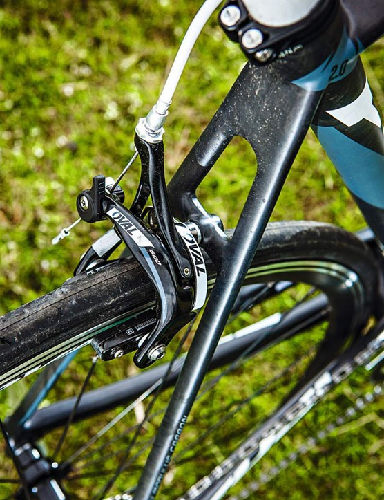 Don't let the flat section seatstays trick you into thinking this is a limo-style cruiser