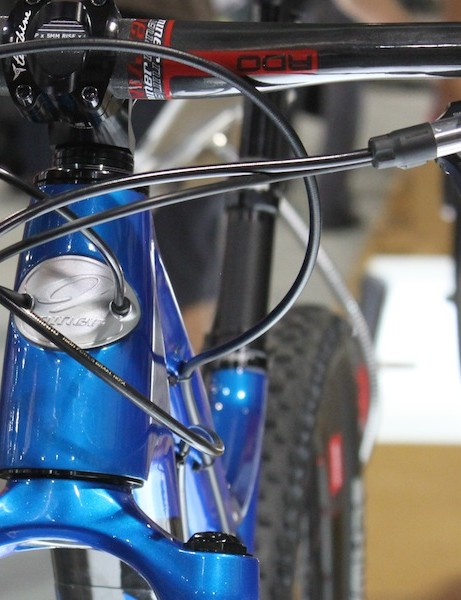 The rear derailleur and brake lines are smartly routed through the head tube badge.