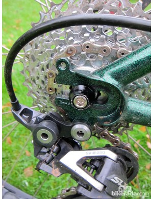 Horizontal dropouts permit a geared or single sprocket setup