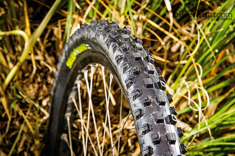 Maxxis SwampThing DH Single Ply MaxxPro tyre