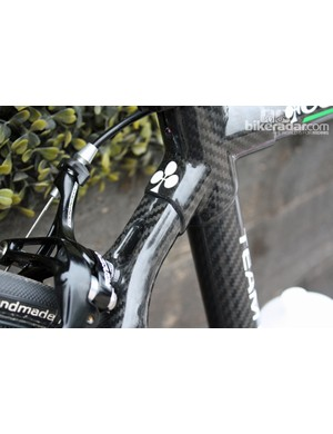 Colnago lines are very much distinctive