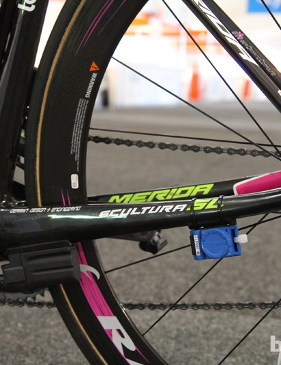 Chunky chain stays transmit the Aussie climber's efforts to the rear wheel