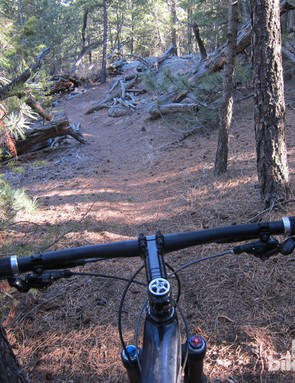 Some trails are just not compatible with wide handlebars...