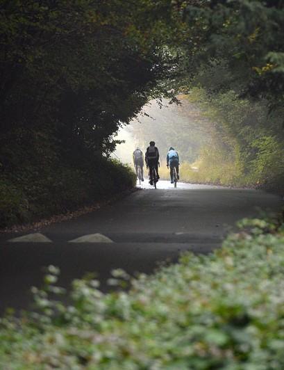 Enjoy the leafy lanes of Surrey