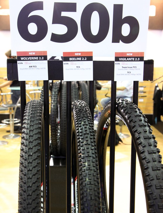 WTB will have three 650b tires available in 2013.