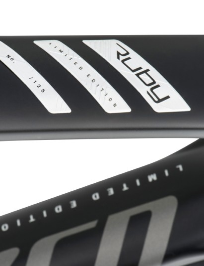 Special graphics and top-end spec seperate this model from the product bike
