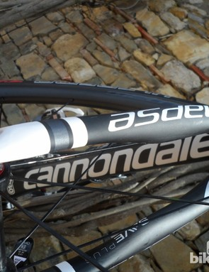 The fork legs bear a similar helical design to the seatstays