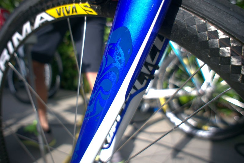 Nice detailing on the fork of Nibali's Tarmac