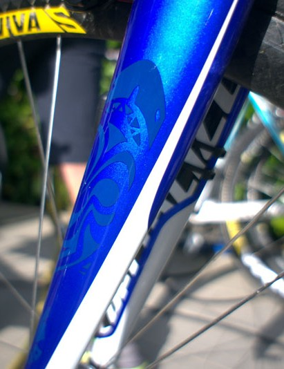 Nice detailing on the fork of Nibali's Tarmac