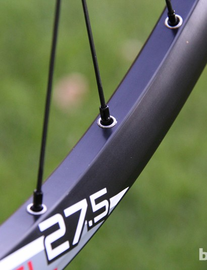Unlike most Stan's NoTubes rims, Sun Ringle's are eyeleted and have a boxy profile