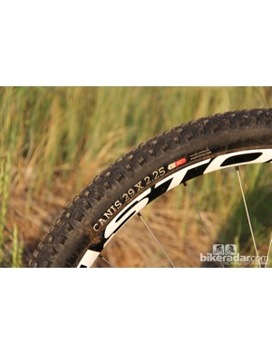 Onza's Canis 29x2.25in tires were a good match for the bike's versatile nature