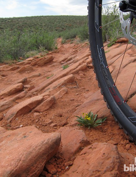 The 29in wheels and superb suspension on the new Ibis Ripley 29 make short work of square-edged rocks like this