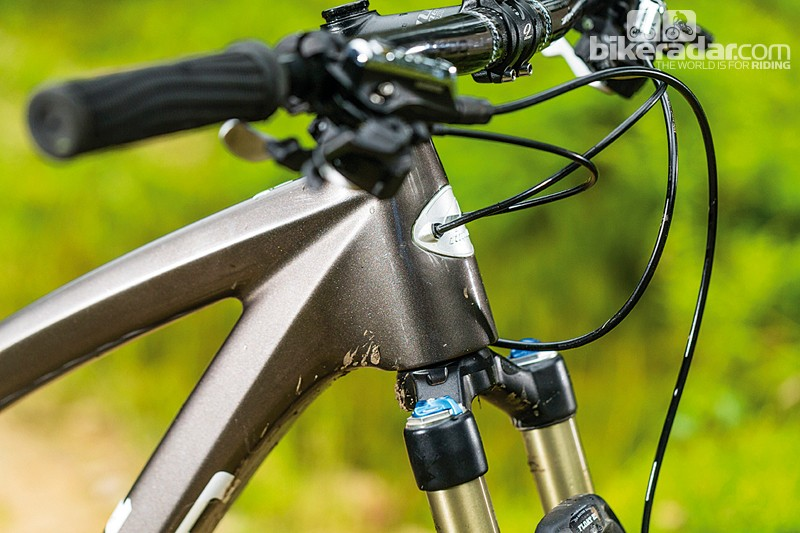Internally routed cables are a letdown as they rattle inside the flat-faced down tube