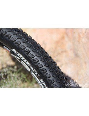 The Ardent race combines the tread pattern of the standard Ardent with the short knobs of the Maxxis Icon for a fast rolling hardpack tyre. The Ardent Race will be available in all three wheel sizes in a 2.2in volume. It will be available later this year. Price is TBD