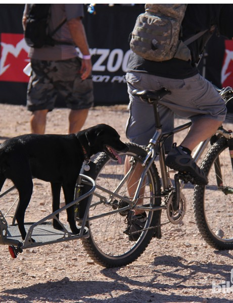 There's more than one way to take your pup mountain biking