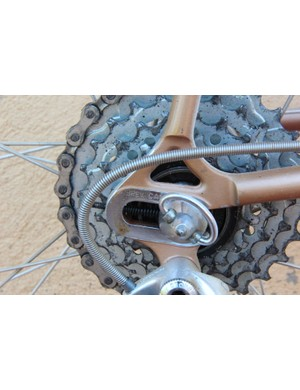 L'Eroica Pro bike: Screws on either side keep the rear axle in place in the horizontal dropouts