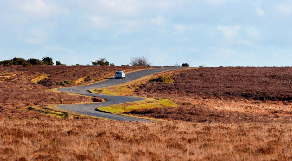 Use of the the New Forest's open roads are a source of controversy between cyclists and local residents